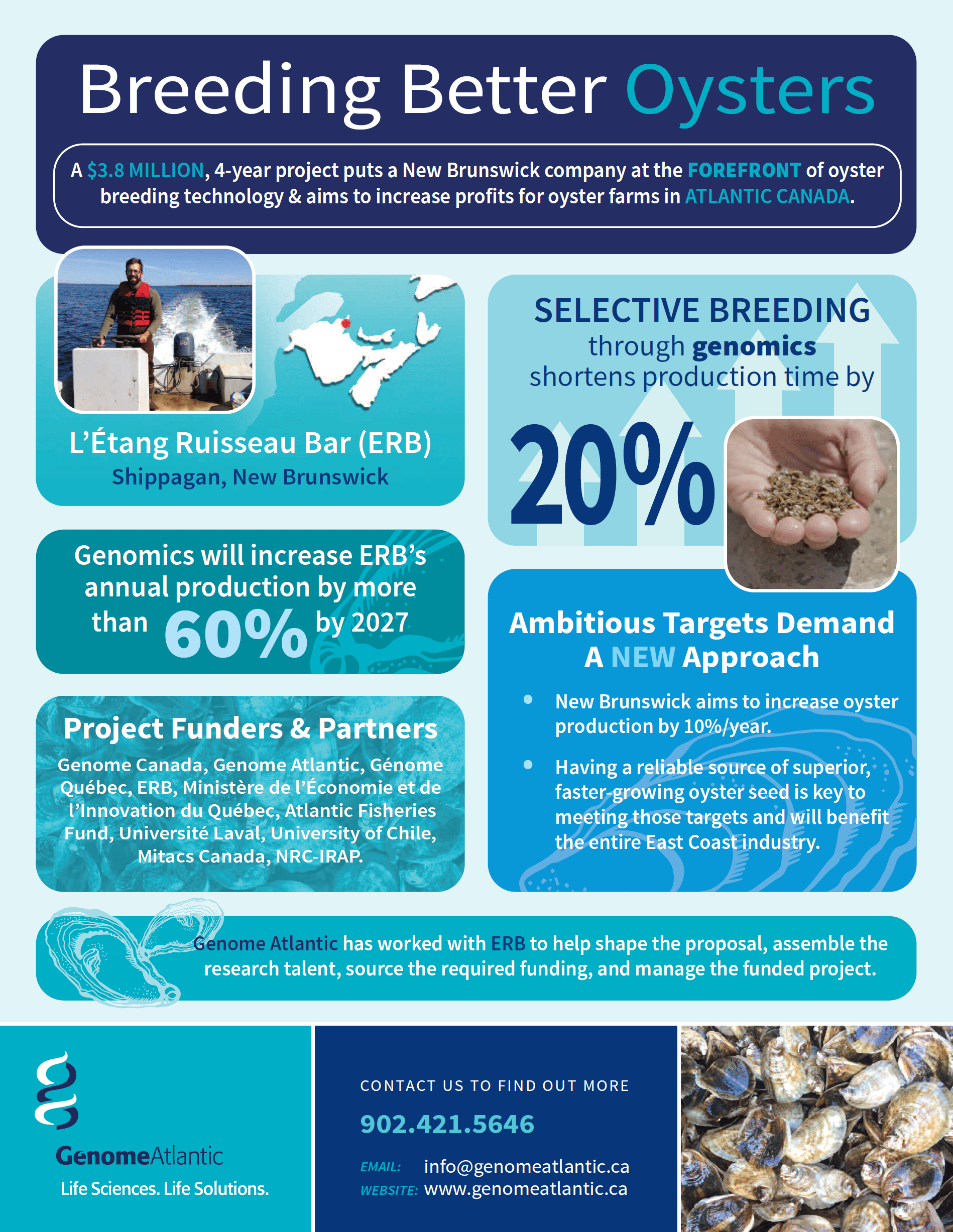 Breeding Better Oysters Genome Atlantic Infographic